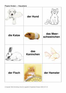 Bilder und Wortkarten zum semantischen Feld Haustiere