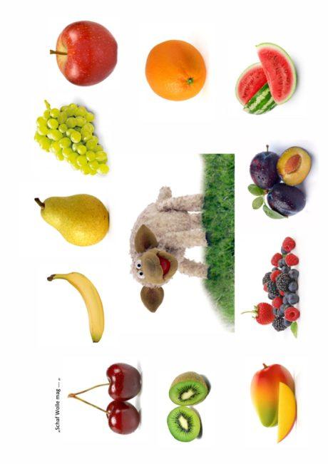Das Schaf Wolle mag Obst