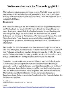 """Textarbeit Aphasie """"Weltrekord Murmeln"""""""